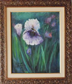 Claude Monet - Flor de Iris - CM019-17